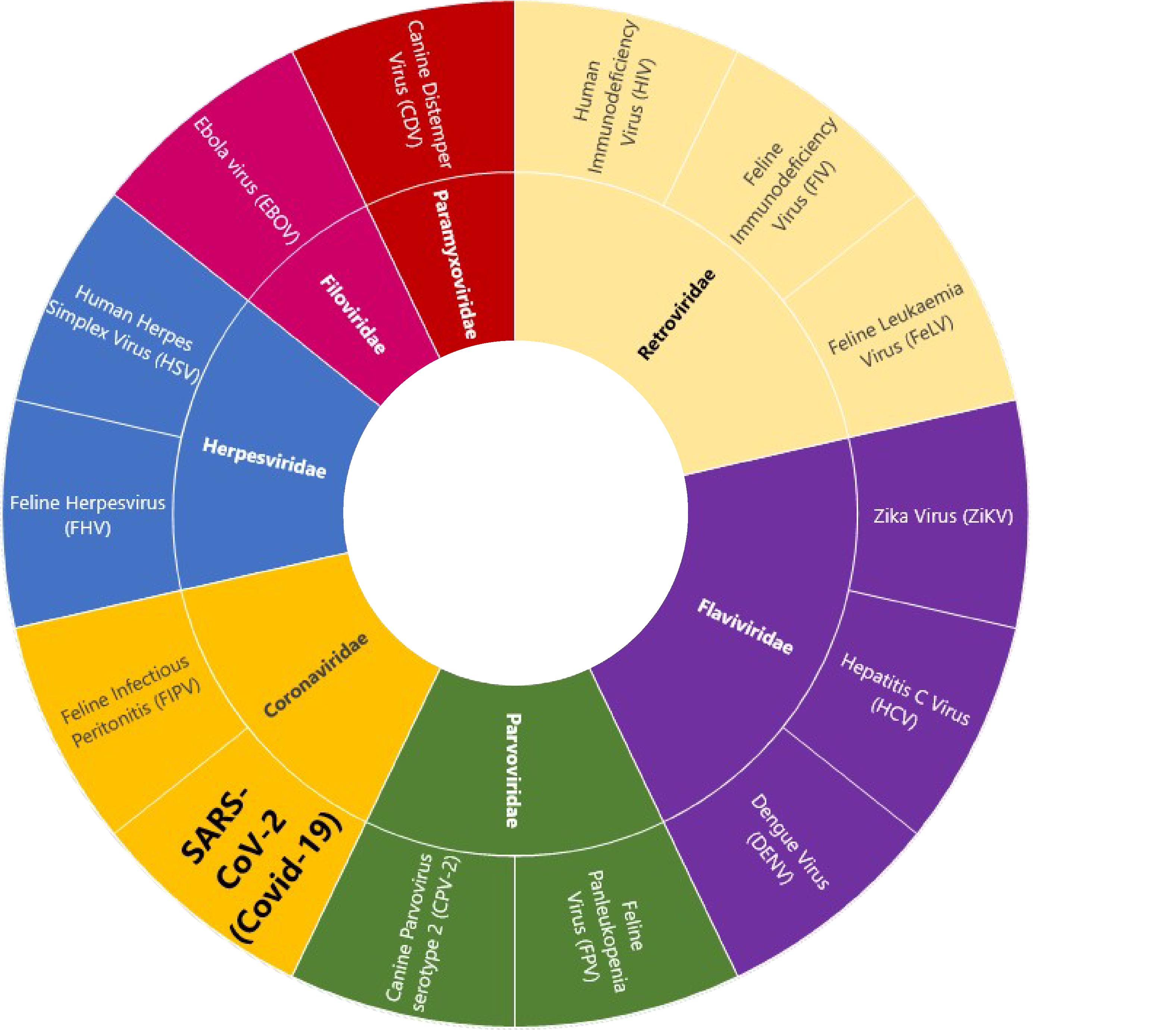 Coloured circle chart_white retromad_31082020